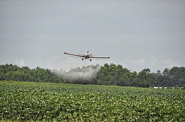 """O herbicida 2,4D é uma das substâncias utilizadas em um componente chamado de """"agente laranja"""", usada na Guerra do Vietnã"""