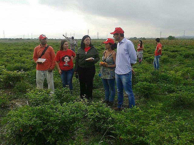 Brigadas de los Sin Tierra brasileños desarrollan trabajos en agroecología en tres regiones de Venezuela