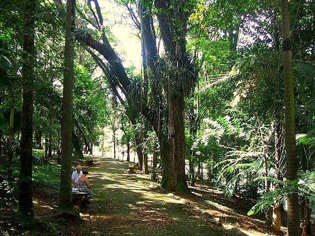Parques são reabertos em São Paulo