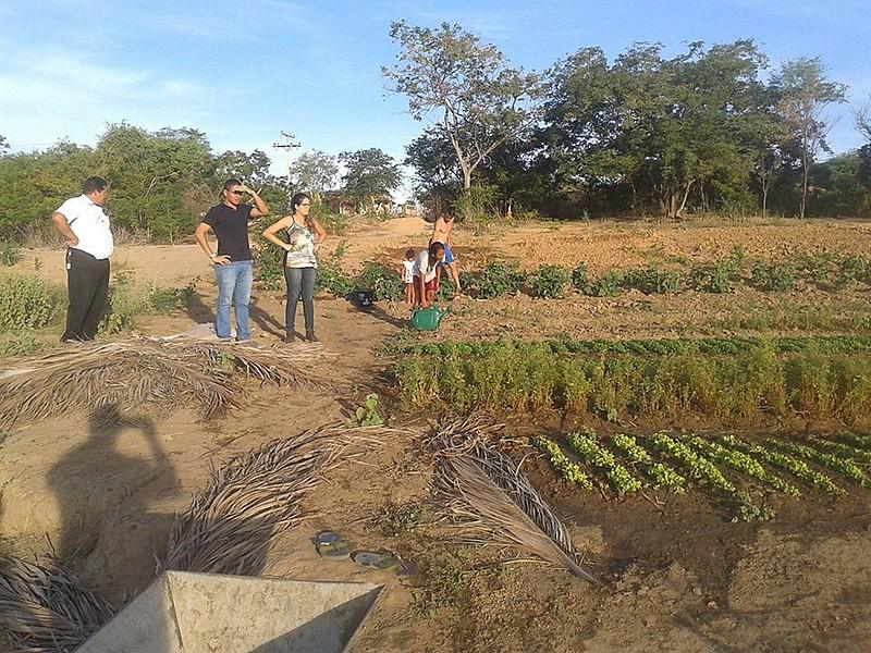 Titulação de terra quilombola é uma medida compensatória, diz advogado
