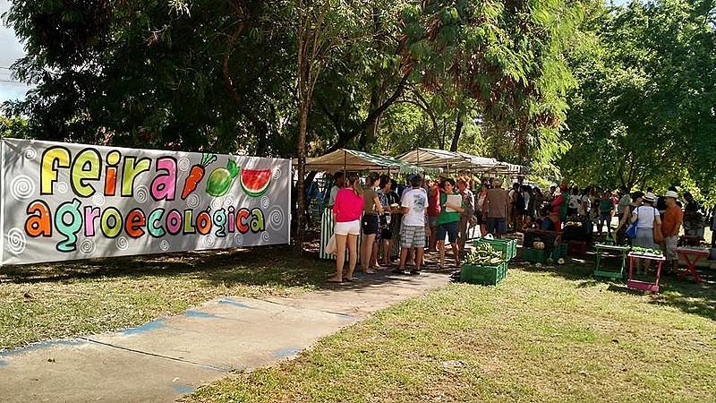 Pernambuco é um estado onde as feiras agroecológicas acontecem regularmente em várias cidades.