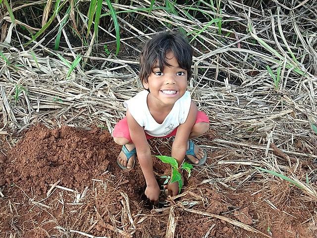 Plan nacional de reforestación del MST fue lanzado en el DF el sábado (14), con plantío de mudas y conmemoración