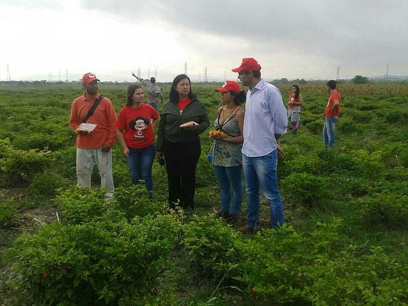 Brigadas dos sem-terra brasileiros desenvolvem trabalhos em agroecologia em três regiões da Venezuela