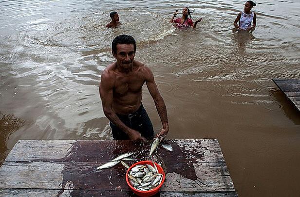 A pesquisa verificou que o consumo de peixe é um dos fatores que está relacionado ao aumento dos níveis de mercúrio no sangue das pessoas