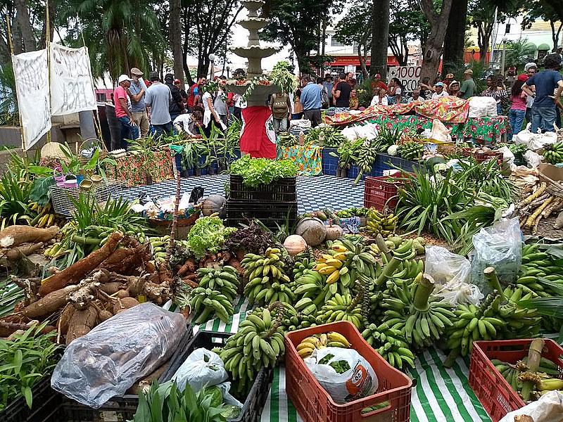 Alimentos produzidos pelos moradores do Quilombo Campo Grande, em Minas Gerais