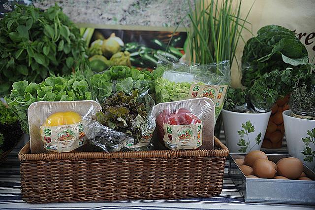 Produtos naturais devem ser prioridade na alimentação cotidiana