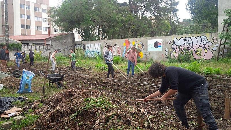 No dia 21 de maio organizadores da horta comunitária no bairro Bom Retiro receberam notificação da Prefeitura de Curitiba
