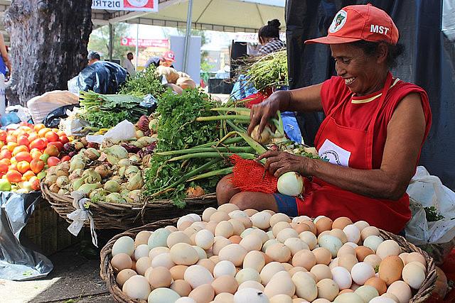 Agricultura familiar leva alimento às escolas brasileiras