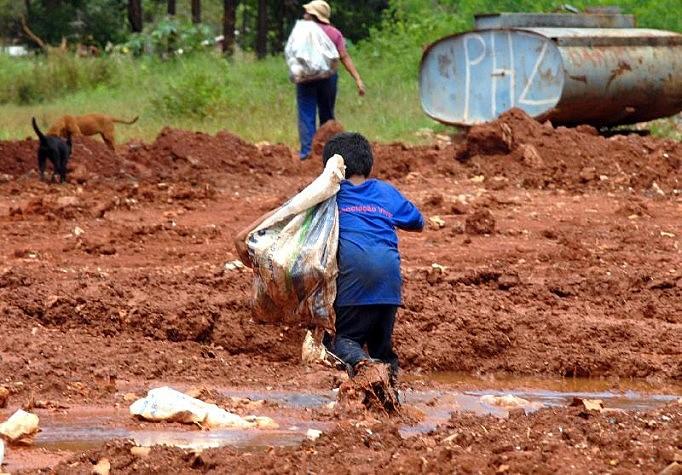 O Ministro Público do Trabalho recebe em média 4,3 mil denúncias de trabalho infantil por ano