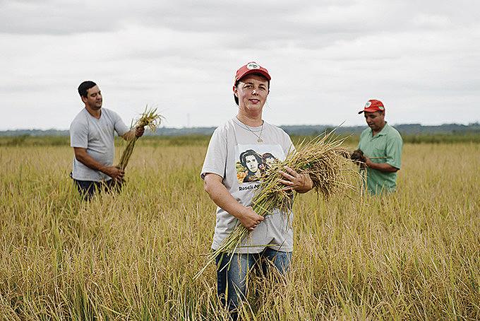 Beneficiado, grão sem veneno é exportado para os Estados Unidos, Holanda, Alemanha, Venezuela, Espanha e Portugal