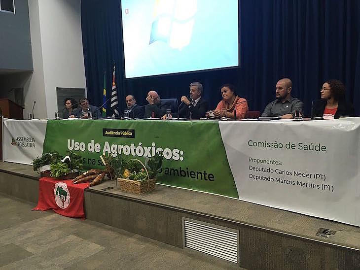 """""""O agronegócio sempre precisa de propagandas para convencer o público de que os agrotóxicos não fazem mal"""", afirmou Carla Bueno"""
