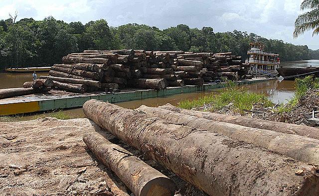 Proyectos defendidos por el gobierno golpista de Michel Temer (PMDB) amenazarán más aun el medio ambiente, dice agricultora