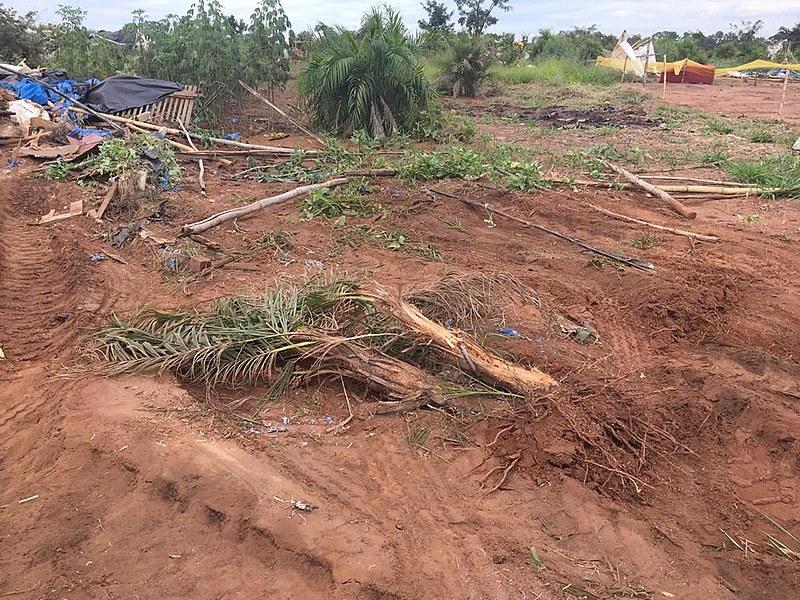 Acampamento Paulo Kageyama, em Mogi Guaçu, recuperou plantas do cerrado e da mata Atlântica, que foram derrubadas pela SIMA