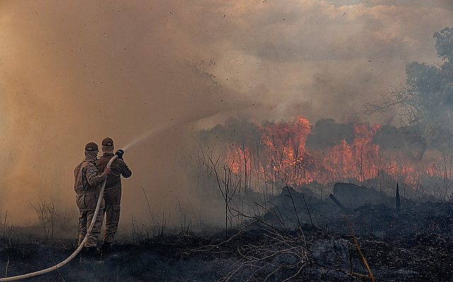 Somente em 2019, o número de focos de incêndio chegoua 7.003