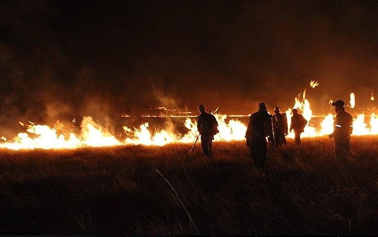 Incêndio na Chapada dos Veadeiros: mais de um quarto da área do parque foi consumido pelas chamas