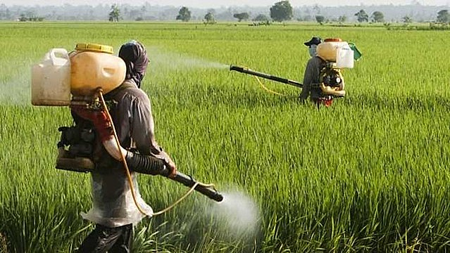 Brazil's farm lobby is feeling so comfortable with the far-right government that it stopped pushing legislation to relax pesticide rules