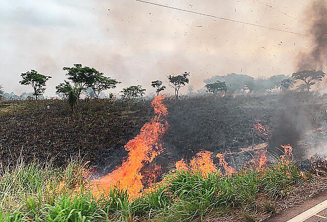 """La deforestación es el primer paso del """"grilagem""""; un registro de los incendios en la carretera BR-155 en Eldorado dos Carajás (Pará)"""
