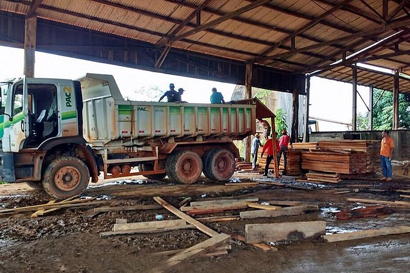 Avanço de madeireiros sobre terra indígena em Medicilândia (PA)