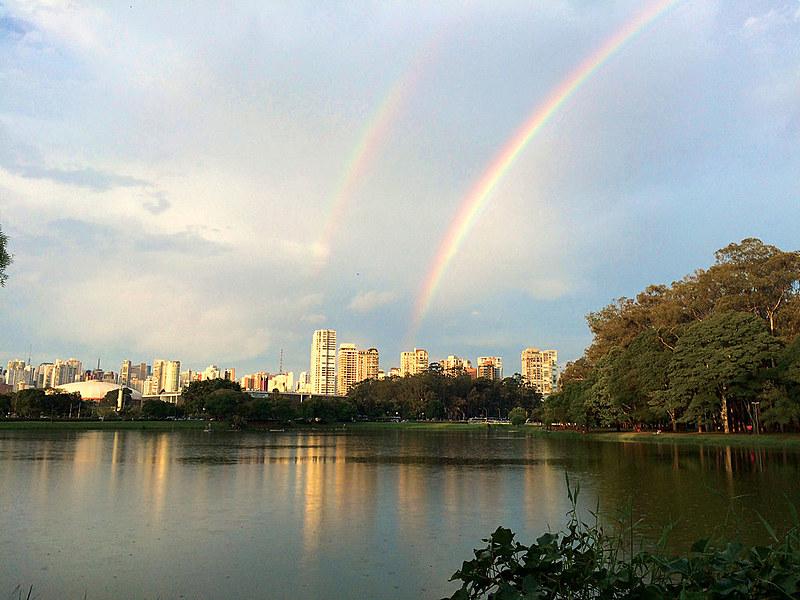 O Parque do Ibirapuera e mais 13 parques serão geridos pela iniciativa privada, via edital do Procedimento de Manifestação de Interesse