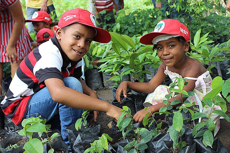 Educação dos sem-terrinha é conectada ao território e aos aprendizados da terra