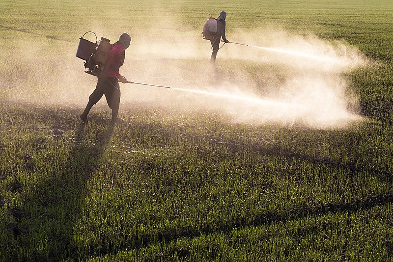Atlas do Agronegócio revela que o lucrativo mercado mundial de agrotóxicos está nas mãos de dez empresas