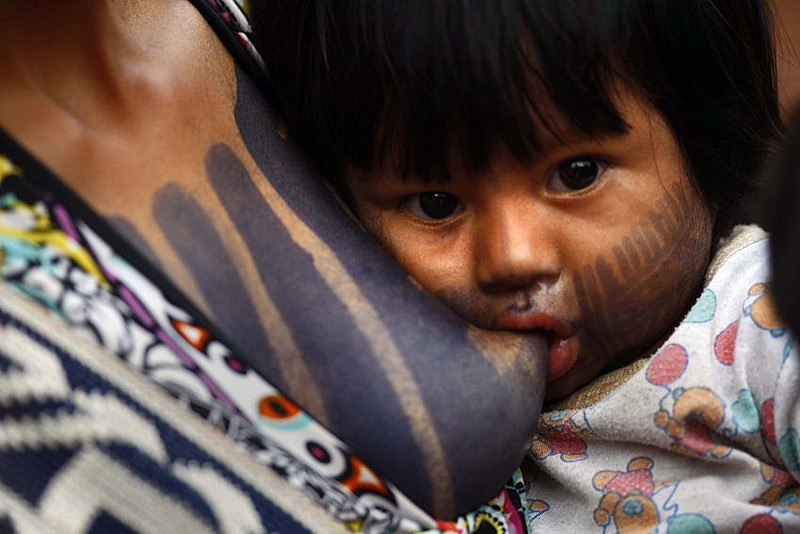 Para Indígenas Guarani, a demarcação de terras refere-se também ao cultivo, e a cultura alimentar do Brasil