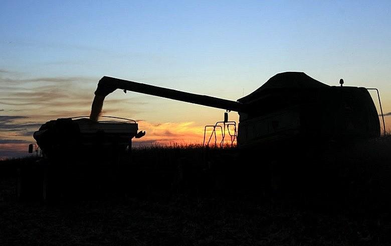 Resultado trimestral foi puxado por setores como o agropecuário, ligado à atividade externa