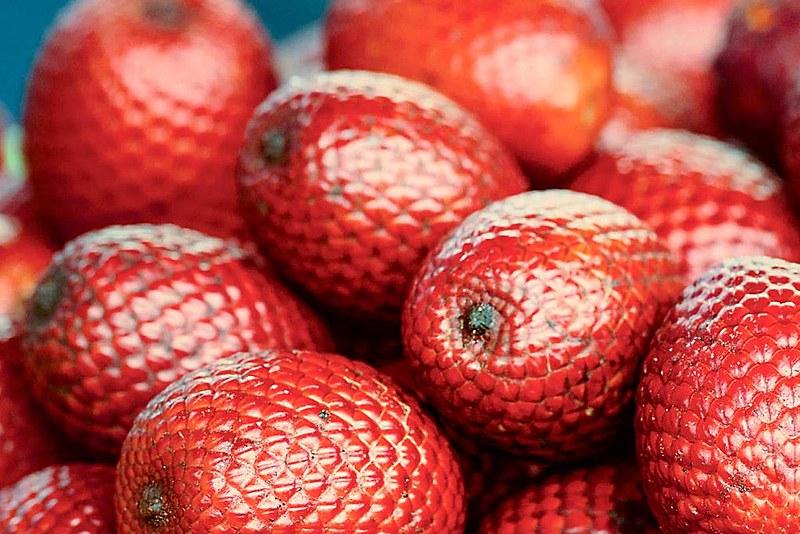 O buriti (foto) pode ser consumido ao natural, com farinha, ou usado para fazer doces, geleias, sorvetes e vinhos.
