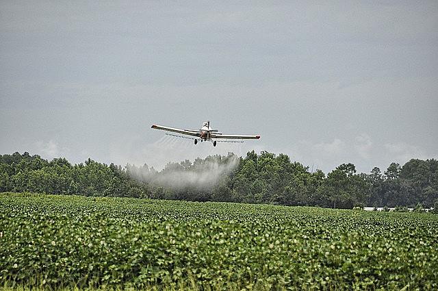 Pulverização por aviões em grandes plantações contamina água, ar e solo