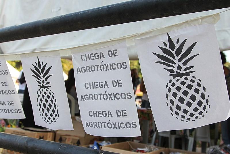 Brasil é o maior consumidor mundial de agrotóxico  e essa situação pode se agravar no futuro