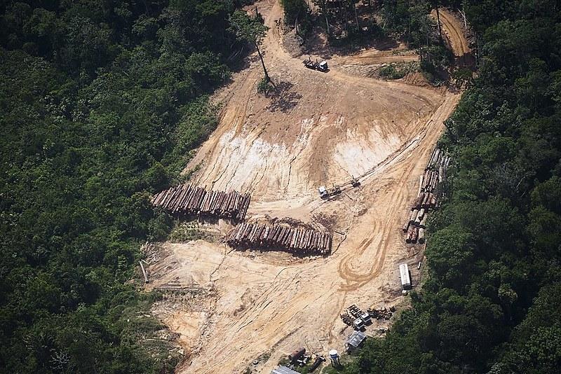 Com relatório, empresas que fazem desmatamento e invasões a terras indígenas podem ter dificuldades para fazer negócios no exterior