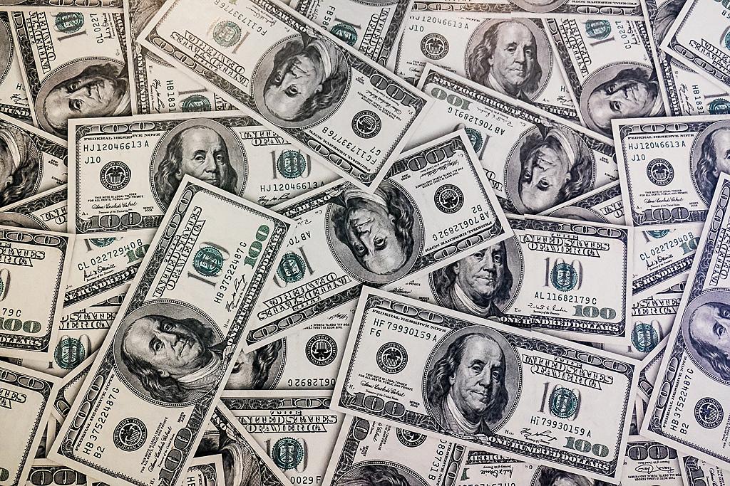 dólares dinheiro