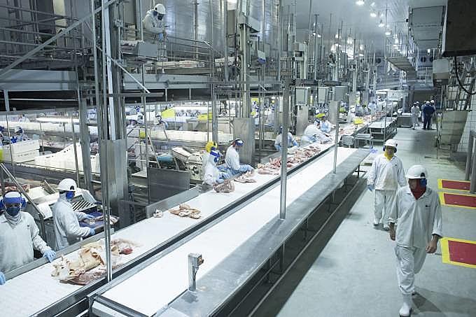 BRF é uma empresa do ramo alimentício, ligado a carnes e alimentos processados