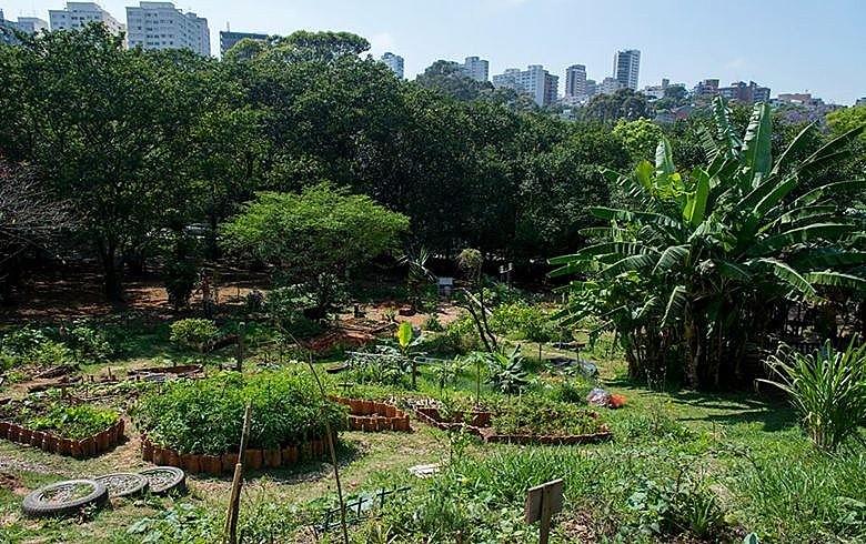 Criada em 2012, a Horta das Corujas foi a primeira em praça pública na cidade de São Paulo