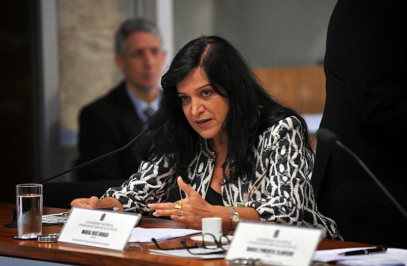 Braga comentou o cenário de perseguição e intimidação à imprensa no Brasil