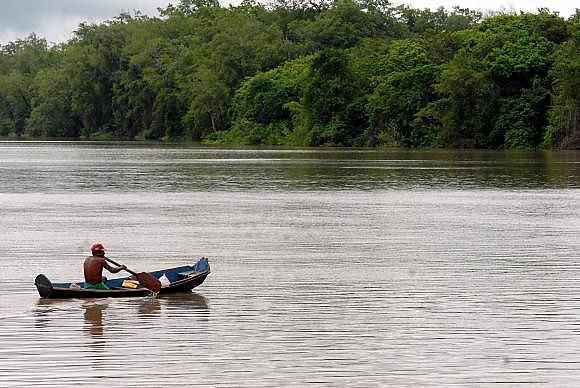 Mesmo com a decisão do governo, o Greenpeace continua sua campanha contra a construção de outras hidrelétricas na Amazônia