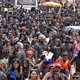 São os 'Cão' da Redinha que invadem o mangue do Rio Potengi e ganham as ruas de Natal.