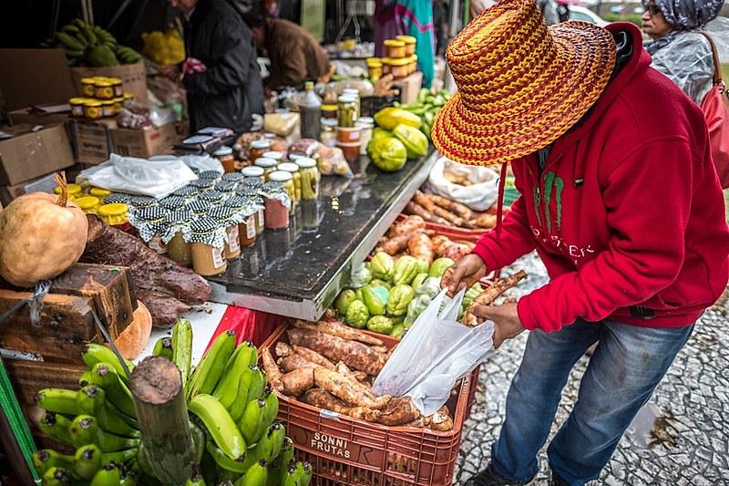 Feira de agroecologia em Curitiba (PR): propriedades certificadas como orgânicas já são 22 mil  no país