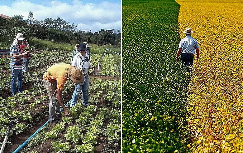 Dirigente lembra que imagem do Banco do Brasil está atrelada ao financiamento da agricultura e quer saber se política será mantida
