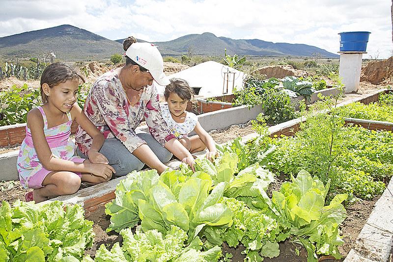 No semiárido vivem quase 30 milhões de pessoas, ou cerca de 15% da população brasileira