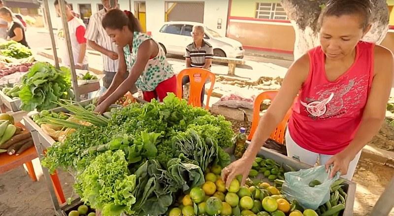 Comunidades comercializam a produção saudável e diversa em feiras agroecológicas
