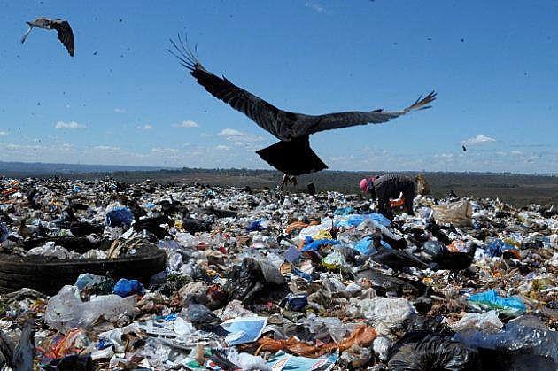 Recolección de material reciclable en un basural es la opción de la población  que sufre altos niveles de desempleo para tener ingresos