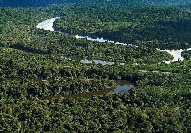 Exército brasileiro estima que patrimônio natural total da Amazônia gire em torno U$ 23 trilhões; riqueza está em risco