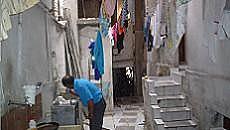 Em um cortiço na zona leste de São Paulo, lavanderia e banheiro dividem espaço no quintal