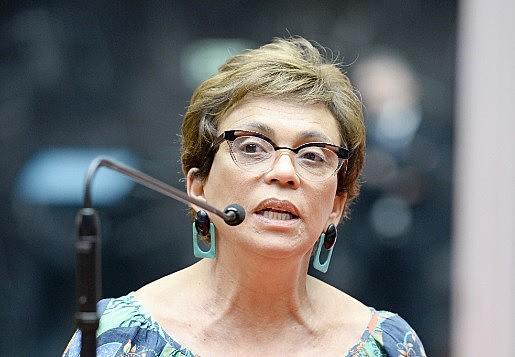 Parlamentar analisa situação das políticas públicas que visam o fim da violência contra a mulher