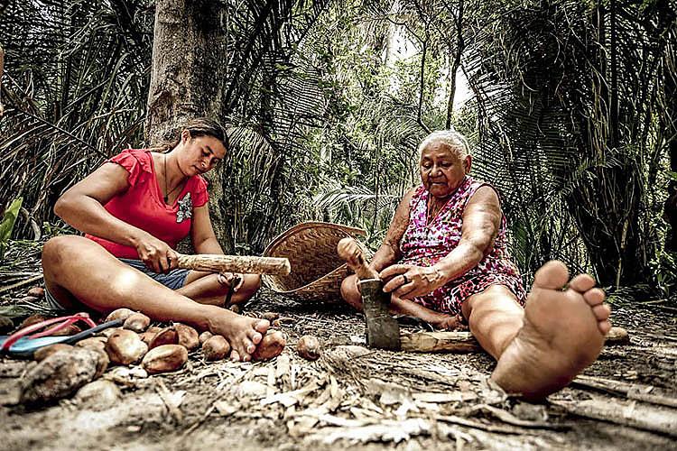 Mulheres da Associação do Movimento Interestadual das Quebradeiras de Coco Babaçu