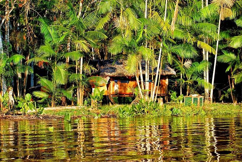 Habitação ribeirinha em trecho da floresta amazônica no estado do Pará