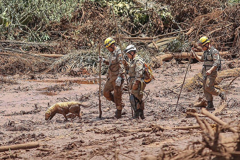Equipes vasculham a lama tóxica nesta segunda-feira (28)