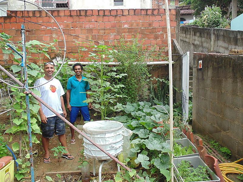 Quintal passou de depósito de entulhos para se tornar uma espécie de laboratório para testar práticas de agricultura orgânica