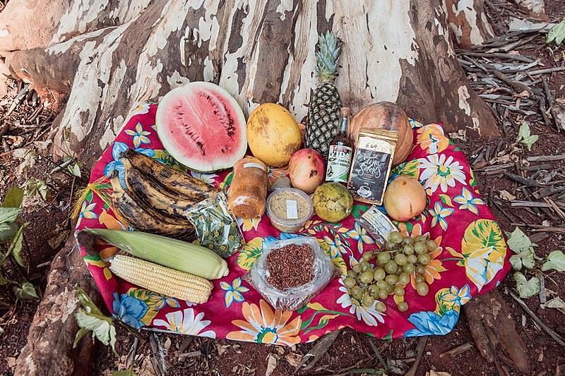 Frutas e grãos orgânicos que compramos na feira, que acontece até o próximo domingo em São Paulo (6)